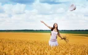 happy day fields nature background wallpapers on desktop