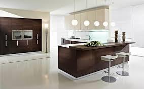 Kitchen Cabinet Modern Design Kitchen Cabinets Modern Beauteous Contemporary Kitchen Cabinets