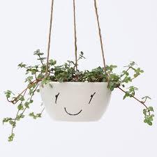 algreen self watering wicker white plastic hanging planter pack