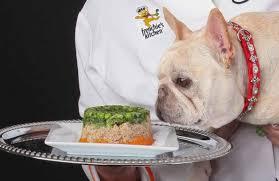 frenchie u0027s kitchen pioneering in frozen dog food niche