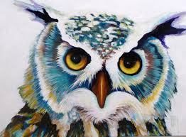 colorful wildlife paintings variety of animals bear owls fish