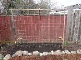 pickles u0026 peas northwest gardening u0026 preserving page 2