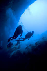 200 best diving images on pinterest scuba diving scuba diving