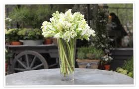 How To Make Roses Live Longer In A Vase Flower Arranging By Vase Goop
