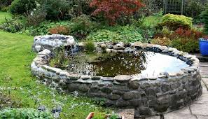 How To Build A Fish Pond In Your Backyard Triyae Com U003d Fish Dying In Backyard Pond Various Design