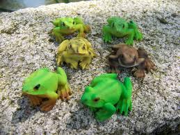 animaux resine jardin 68166 figurine statuette six grenouille animal deco jardin