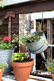 Flowers For Backyard by Potting Shed Shutters And New Flowers For The Shedfunky Junk Interiors