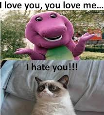 Grumpy Cat Meme Love - grumpy cat i love you