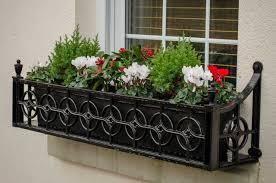 Plants For Winter Window Boxes - outdoor planters the plant pot shop