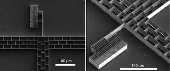 cr it lyonnais si e social bacterial electrical conduction band alignment band pass filters