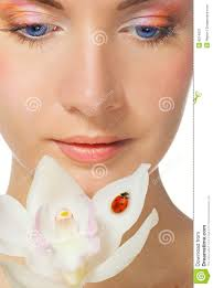 beutiful with white orchid stock photo image 8314070