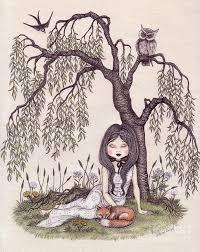 the willow tree drawing by snezana kragulj