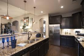 Kitchen Faucets Houston Interior Elegant Black Timberlake Cabinets With Kitchen Sink