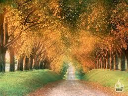 keindahan alam beautiful pictures of nature wallpaper