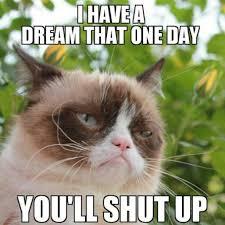 Funny Grumpy Cat Memes - grumpy cat love me some grumpy cat pinterest grumpy cat
