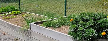 why raised bed gardening is better countryside network
