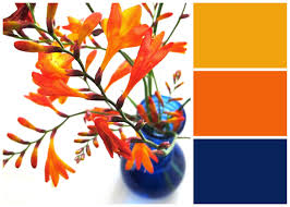 what goes well with blue velvet moth studio bright blue and orange