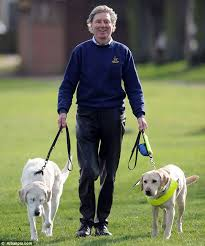 Aids For The Blind Uk Guide Dog Aids Blind Owner And Former Leading Labrador After He