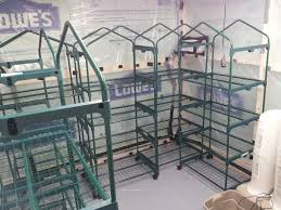 building my first large scale edibles grow room fungi all
