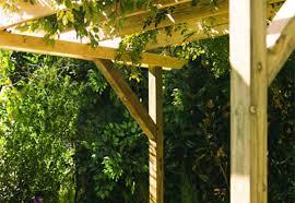 Pergolas Home Depot by Build A Pergola Garden Club