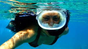 Iowa snorkeling images Afternoon snorkeling in key west fury reef and ritas trip jpg