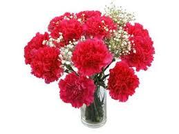 Best Flower Delivery Service Die Besten 25 Best Flower Delivery Ideen Auf Pinterest