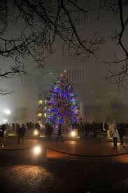 photos christmas tree lighting at empire state plaza times union