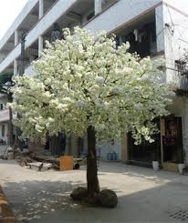 2015 top sales artificial cherry blossom trees cherry flower