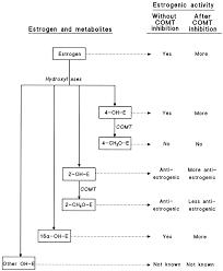 catechol o methyltransferase comt biochemistry molecular