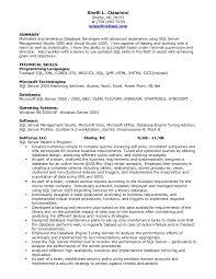 Example Resume Skills by Sample Resume For Sql Developer Resume Cv Cover Letter