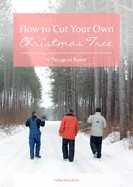 How To Cut Your Own Christmas Tree Rather Luvly