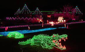 zoo lights portland oregon zoo lights at the portland zoo oregon pinterest zoo lights