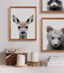 Raccoon Nursery Decor Boys Woodland Themed Nursery Room Decor Deer And Raccoon