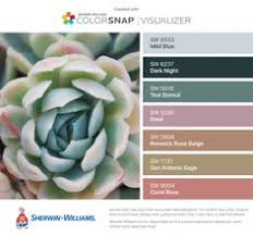 dragon fruit paint colors from chip it by sherwin williams