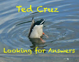 Duck Meme - searching for ithaka ted cruz and the duck butt meme