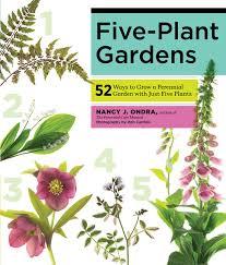 amazing rain garden plan gardening mother earth living