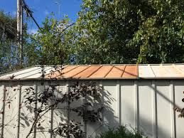 Shed Roof House How To Remove Rust From Metal Shed Roof