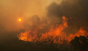 California Wildfire Ranking by Wine Country Wildfires Torch California Homes Wane