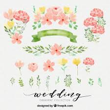 flower vectors photos and psd files free download