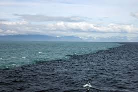 mythbusting u0027the place where two oceans meet u0027 in the gulf of