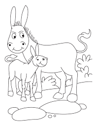 donkey foal coloring pages download free donkey foal