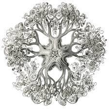 art sci ernst haeckel draws a psychedelic world