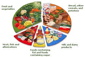 marley u0027s preschool food u0026 nutrition