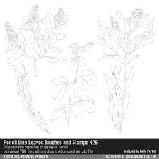 pencil line leaves brushes and stamps no 06 handdrawn sketches of