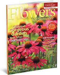 Summer Flowers For Garden - ultimate flowers for summer garden gate store