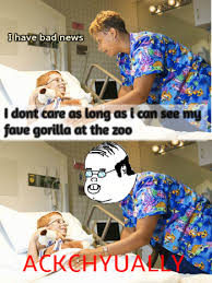 Jg Wentworth Meme - elegant jg wentworth meme ackchyually harambe edition ackchyually