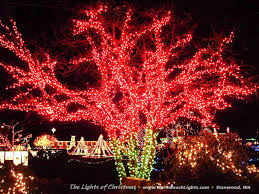 the lights of christmas festival 2017