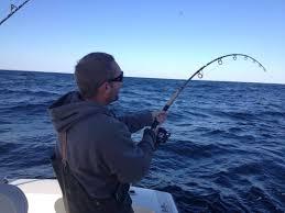 striper fishing fishing charters cape cod massachusetts