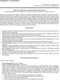 Resume Format For Aviation Ground Staff Boeing Resume Sample Eliolera Com
