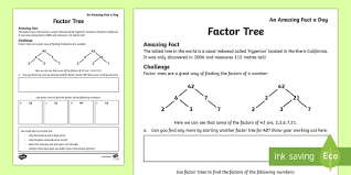 all worksheets factor trees worksheets free printable